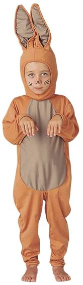 BROWN BUNNY COSTUME FOR BOYS