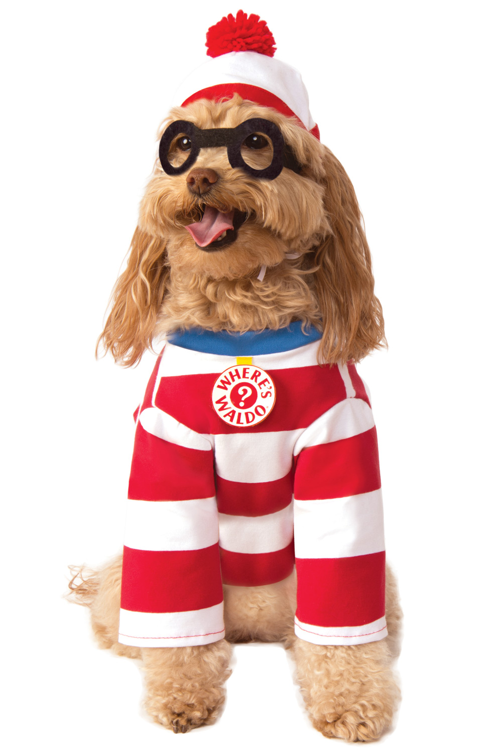 WHERE'S WALDO COSTUME FOR LARGE DOGS