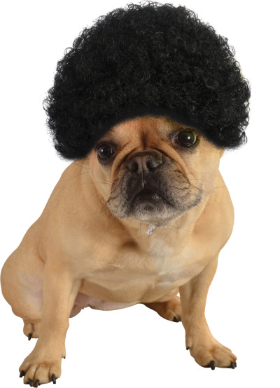 AFRO WIG FOR DOGS AND CATS