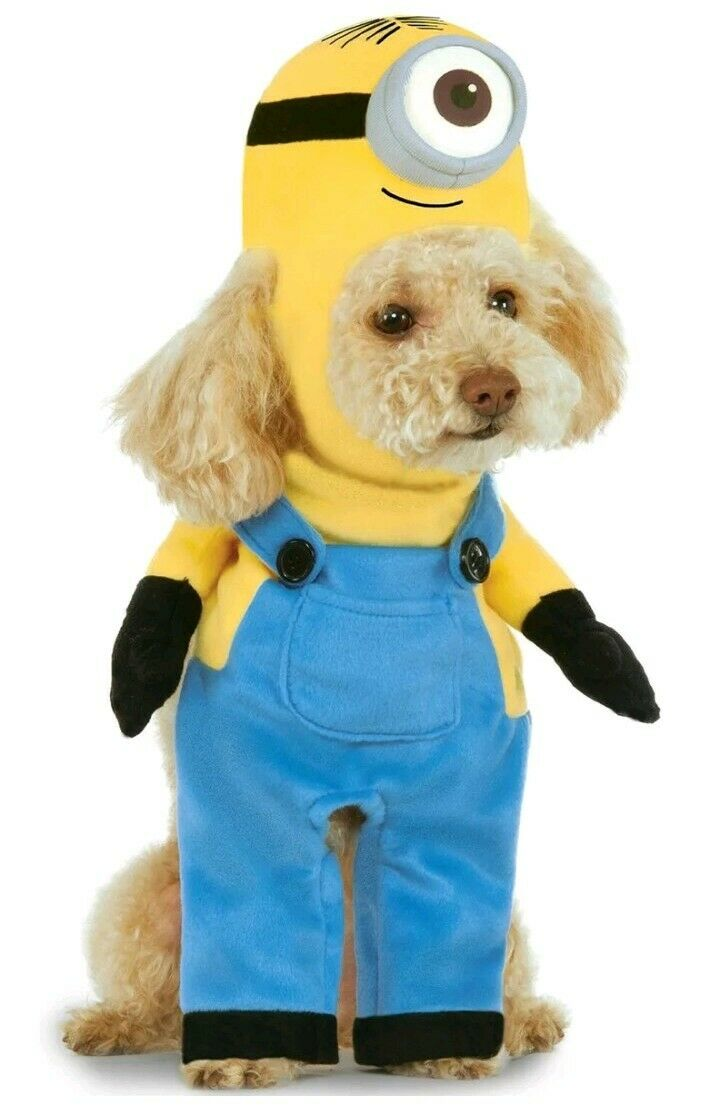 DESPICABLE ME ARMS MINION STUART COSTUME FOR PETS