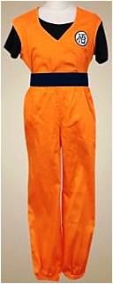 DRAGON BALL Z GOKU COSTUME FOR BOYS