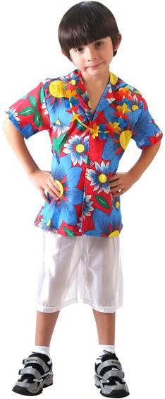 HAWAIIAN COSTUME FOR BOYS  sc 1 st  Crazy For Costumes/La Casa De Los Trucos (305) 858-5029 - Miami ... & Crazy For Costumes/La Casa De Los Trucos (305) 858-5029 - Miami ...