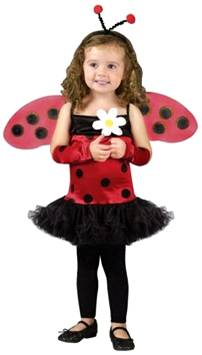 LOVELY LADY BUG