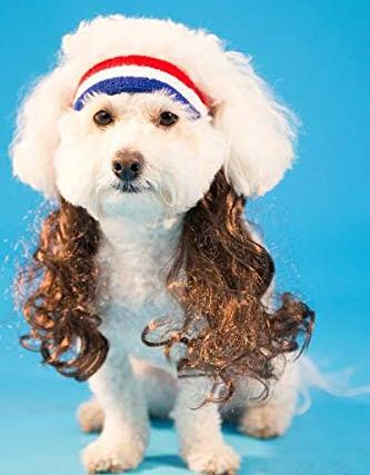 MULLET FOR YOUR MUTT COSTUME FOR DOGS OR CATS