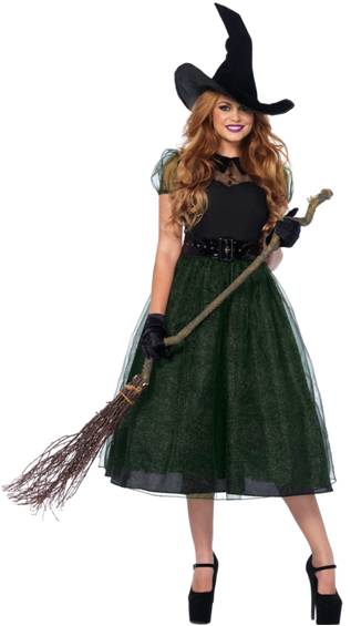 SEXY DARLING SPELLCASTER WITCH COSTUME FOR WOMEN