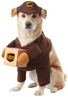 UPS PAL COSTUME FOR DOGS